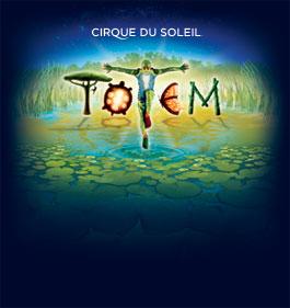 VIsuel_Totem_siteweb